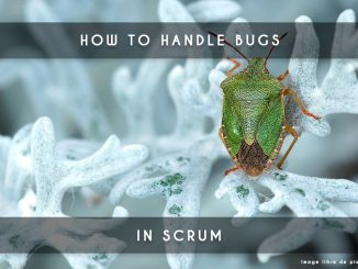 bugs in scrum