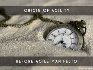 origin of agility